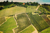 Vintage view hills of Tuscany with vineyard in the Chianti Regio — Stock Photo