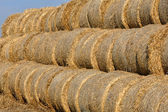 Hay bail harvesting in a field landscape  — Stock Photo