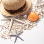 Seashells and starfish over white — Stock Photo #12105845