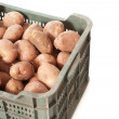 Potatoes green box — Stock Photo #12476707