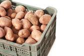 Potatoes green box — Stock Photo