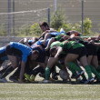 Stock Photo: Rugby amateur mele