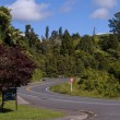 Road in New Zealand — Stock Photo #2994980