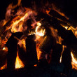 Large oak camp fire — Stock Photo #37405759