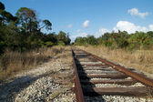 Railroad tracks in wilderness — Stock Photo