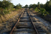 Railroad tracks in florida — Stock Photo