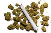 Close up of medicinal marijuana and a joint — Stock Photo