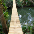 Постер, плакат: Long suspension walking bridge in tropics