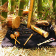 Indigenous musical instruments — Stock Photo #51774327