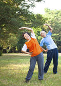 Asian senior couple in the park — Stock Photo