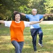Happy asian senior couple in the park — ストック写真