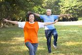 Felice coppia senior asiatica nel parco — Foto Stock