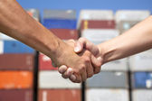 Two business man handshaking before stack of containers — Stock Photo