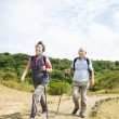 Happy asian senior couple hiking — Stock Photo #15750261