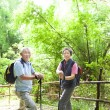Senior couple hiking in the nature with bamboo background — Stock Photo #17370777