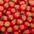 Group of fresh tomatoes - Stock Photo