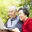 Happy Senior couple learning with laptop — Stock Photo #18910605