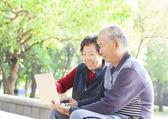 Heureux couple senior, surfer sur internet avec ordinateur portable — Photo