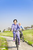 Asian seniors couple biking in the park — Stock Photo