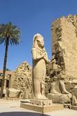 卢克索,在埃及卡纳克神庙 — 图库照片