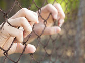 Hand of prison in jail — Stock Photo