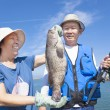 Asian senior couple fishing and showing big grouper — Stock Photo