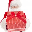 Santa claus showing gift box — Stok fotoğraf