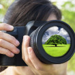 Young Woman taking photo with green nature concept — Stock Photo