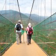 Happy senior couple walking on the bridge in the nature park — Stock Photo