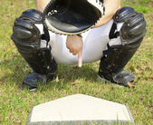 Baseball catcher showing gesture for secret sign — Stock Photo