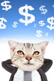 Businessman and cat head thinking money — Stockfoto