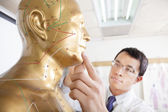 Chinese medicine doctor teaching Acupoint on human model — Stock Photo