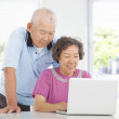 Senior couple using a laptop at home — Stock Photo #40831227