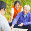 Seniors play traditional chinese board game Go — Stock Photo