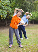 Senior couple doing exercise in the park. — Stock Photo