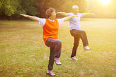 Senior healthy fitness couple with sunset background — Stock Photo