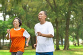 Happy senior couple running together in the park — Stock Photo