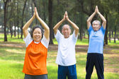 Seniors  doing gymnastics in the park — Stock Photo