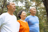 Happy senior sibling standing a row in park — Stockfoto