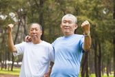 Happy senior brothers enjoy retire time in the park — Stock Photo