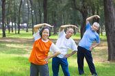All seniors  doing gymnastics in the park — Stock Photo