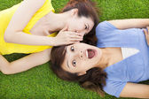 Sisters whispering on the meadow and surprised expression — Stock Photo