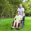 Asian senior woman sitting on a wheelchair with his husband — Stock Photo #50927801