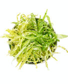 Salad with fresh savoy cabbage on a white background, top view — Stock Photo