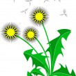 Stock Vector: Dandelion, over white