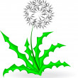 Dandelion, over white — Stock Vector #38914413