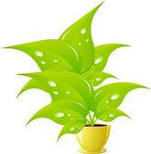 Green flower in a yellow flower pot — Stock Vector