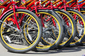 Bicycle rental — Stock Photo