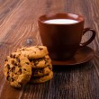 Cookies and milk — Stock Photo