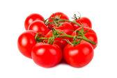 Pomidory — Zdjęcie stockowe